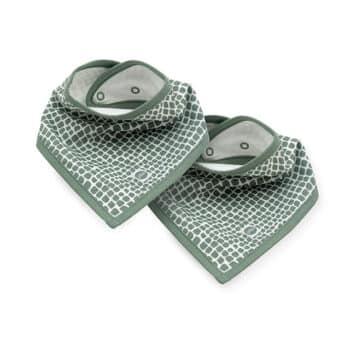 slab bandana snake ash green