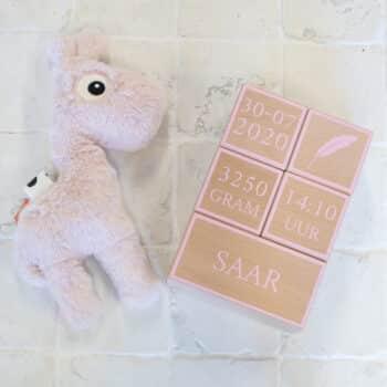 geboorteblokken zacht roze