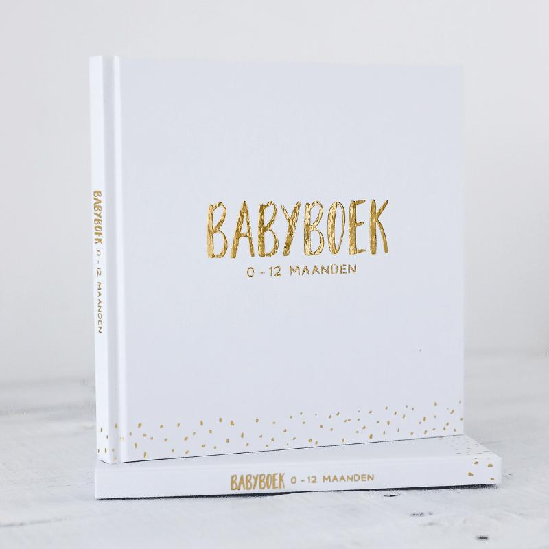 Babyboek Mijlpalen