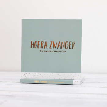 zwangerschapsboek hoera zwanger negenmaandenboek